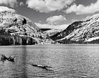 Tenaya Lake on a Cold June Afternoon